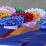 Alex Daskam - An equestrian's rainbow