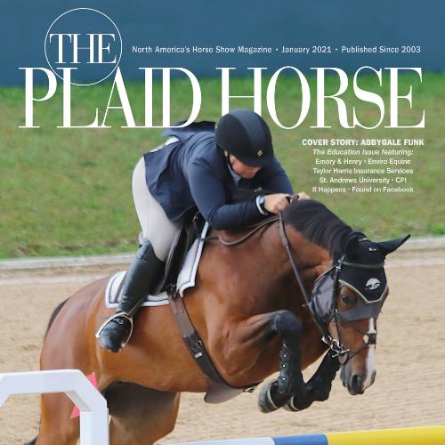 Plaid Horse - January