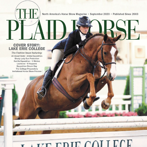 Plaid Horse - September 2020